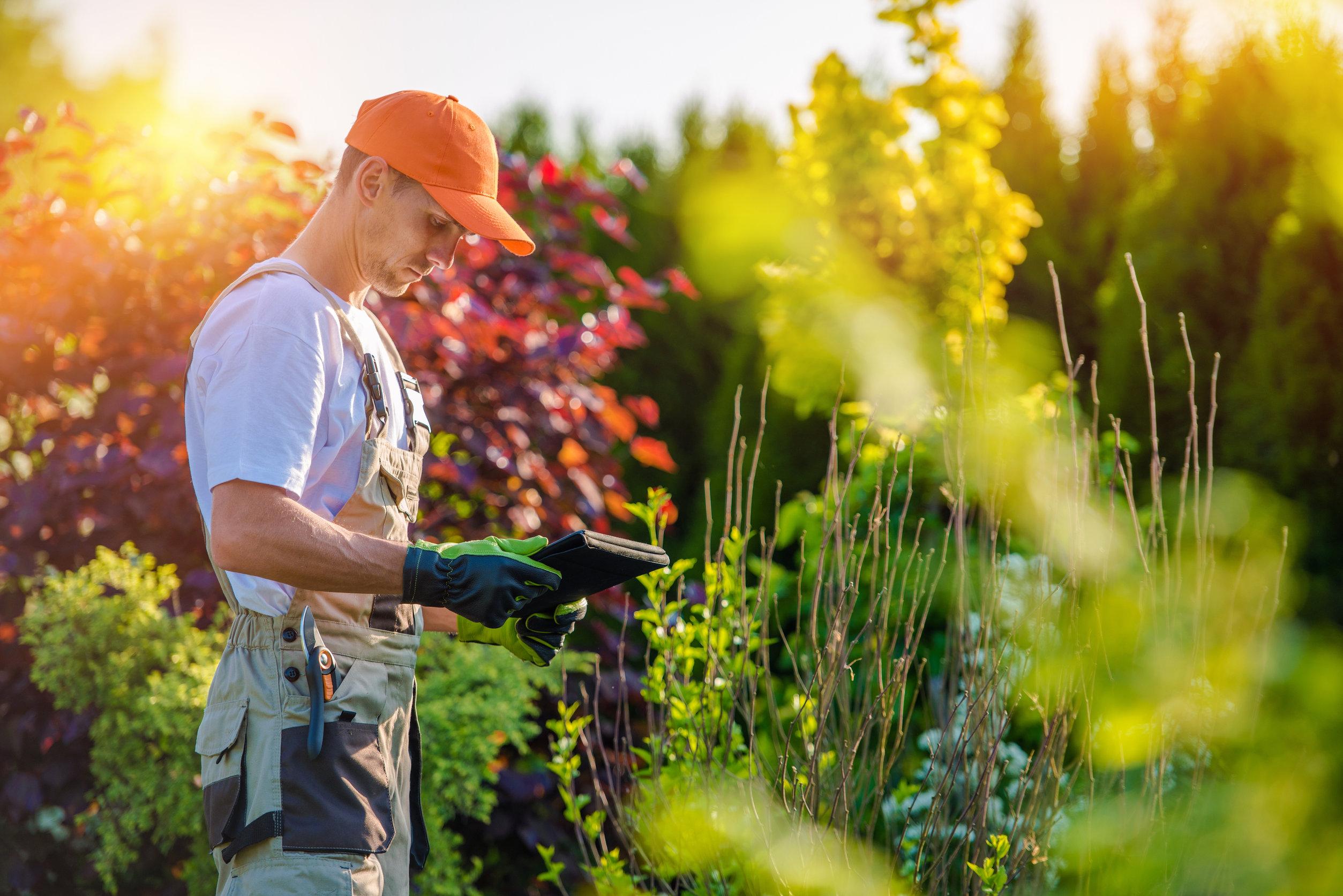 7 conseils pour choisir un bon jardinier paysagiste
