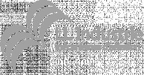 Logo L L INDUSTRIE