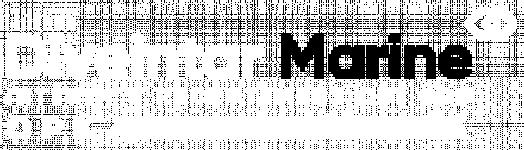 Logo DIVEINTAR MARINE