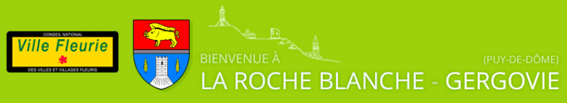 Logo COMMUNE DE LA ROCHE BLANCHE
