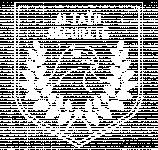 Logo ALTAIR SECURITE