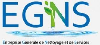 Logo EGNS