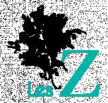 Logo LES Z