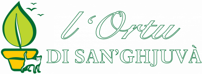 Logo DI SAN GHJUVA