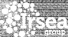 Logo IRSEA