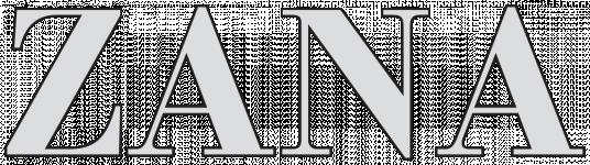 Logo ZANA CONSTRUCTION