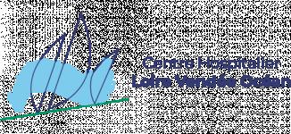Logo CENTRE HOSPITALIER LOIRE VENDEE OCEAN
