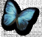 Logo CABINET METAMORPHOSE