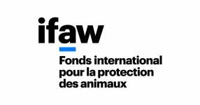 Logo FONDS INT POUR PROTECTION ANIMAUX