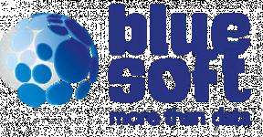 avis BlueSoftGroup