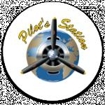 avis PILOT S STATION