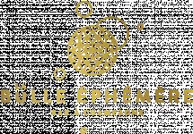 Logo LA BULLE EPHEMERE
