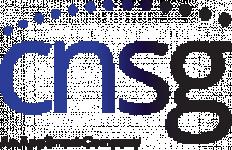 avis CONVERGENT NETWORK SERVICES