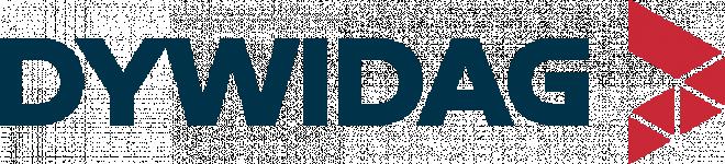 Logo DSI FRANCE
